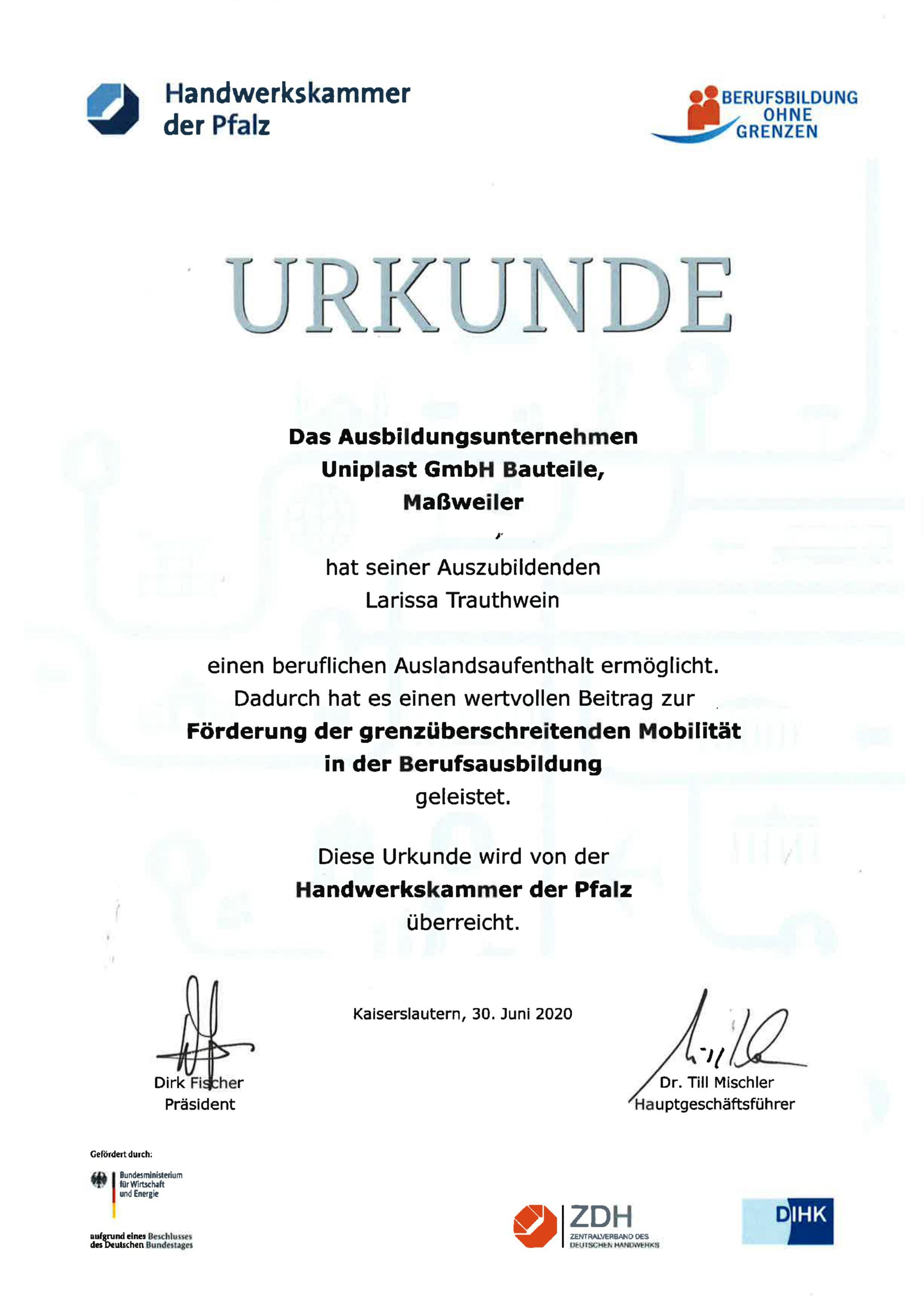 Urkunde Berufsbildung ohne Grenzen
